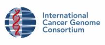 International Cancer Genome Consortium
